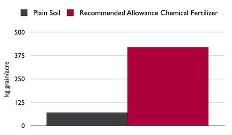 The Longterm Impact of Biochar in Soil (Season 2) | re:char | BioChar | Scoop.it