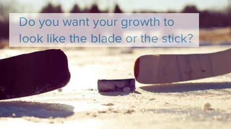 3 Powerful CRM Insights for Hockey Stick Growth | hockeey | Scoop.it
