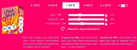 Achetez un Pack Liberté pour la défense du net et du logiciel libre | Libertés Numériques | Scoop.it