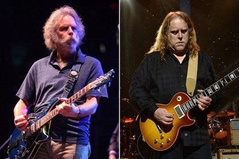 Gov't Mule, Bob Weir, Tedeschi Trucks Band Highlight 2014 Mountain Jam Lineup - Ultimate Classic Rock | Jam scene | Scoop.it