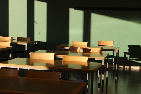 Expertos recomiendan aprender programación desde Educación Primaria | divulgauned | Bibliotecas, bibliotecarios y otros bichos | Scoop.it