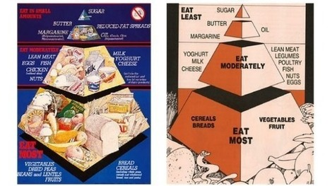 Australia has a new food pyramid | Physical Education - The Nutrition Component | Scoop.it