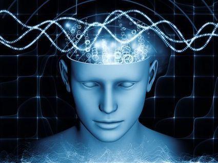 L'Homme percevrait les champs magnétiques, affirme un scientifique   physique quantique et science du réel   Scoop.it