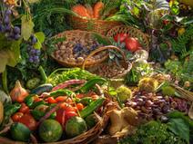 Italia, cresce il numero di vegani - | Alimentazione Naturale | Scoop.it