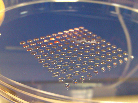 Scientists Successfully 3D Print Embryonic Stem Cells For the First Time | tecnologia s sustentabilidade | Scoop.it