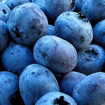 Dix « superaliments » à intégrer dans votre alimentation | Vous avez dit Food ? | Scoop.it