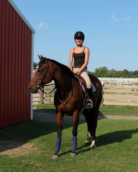 Bucking mare with bad rep is now show horse | Ride On | Scoop.it