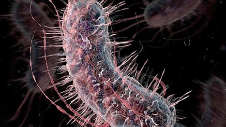 Biologists are close to reinventing the genetic code of life | Amazing Science | Scoop.it