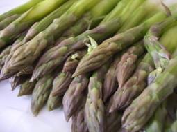 Gli asparagi: portentosi spazzini vegetali dalle straordinarie proprietà benefiche per reni, fegato, polmoni e pelle | Mangiare diverso | Scoop.it
