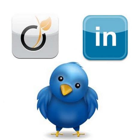 Viadeo Linkedin Twitter… Un trio qui fait bon ménage | Froggy'Net & Le Web 2.0 | Les Brèves MIB | Scoop.it
