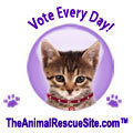 Vote for a Shelter @ The Animal Rescue Site | Animal Rescue and Animal Rights | Scoop.it