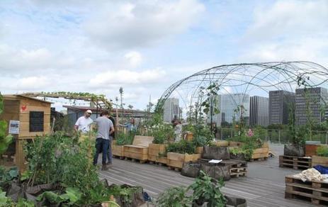Paris : une mini-ferme urbaine sur le toit de Cité de la mode | Agriculture Urbaine et gouvernance alimentaire | Scoop.it