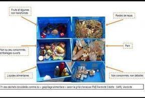 Gaspillage : doit-on respecter les dates de péremption ? | Comportement durable | Scoop.it