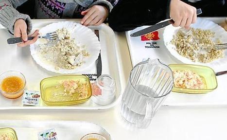 Bio et local pour nos assiettes | La lettre de Toulouse | Scoop.it