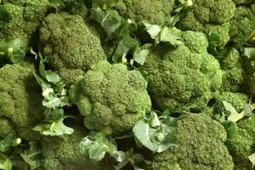 Eating broccoli can reduce blood LDL-cholesterol   Institute of Food Research News   Scoop.it