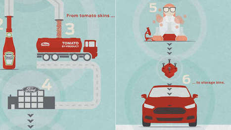 Recyclage : des voitures Ford fabriquées avec des peaux de tomates - Agro Media | Actualité de l'Industrie Agroalimentaire | agro-media.fr | Scoop.it