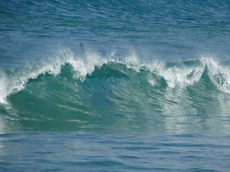 #Business? Why it's time to go learn #surfing | Emergence | Scoop.it