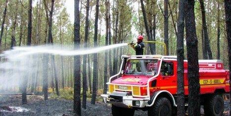 Un feu de forêt s'est déclaré à la frontière des Landes et de la Gironde | location-landes-mimizan-plage nature | Scoop.it