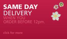 Send Order, Buy Gifts Online India, Best Gift Store - Saugaat | Gifts Online | Scoop.it
