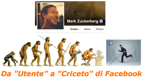 ItaGliano, criceto sapiens in Facebook | Consulenza aziendale digitale: DAO e web | Scoop.it