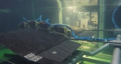 Une hydrolienne à membrane qui imite les poissons | great buzzness | Scoop.it