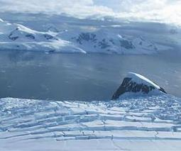 Antarctic fjords are climate-sensitive hotspots of diversity in a rapidly warming region | Sustain Our Earth | Scoop.it