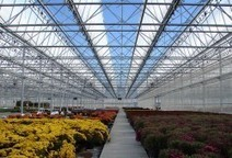 Commercial Grower Equipment By Rough Brothers Inc | Commercial Greenhouse | Scoop.it