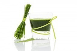 UNDER THE MICROSCOPE - What is Spirulina? - MSC Nutrition   Expert nutrition and exercise blog   Scoop.it