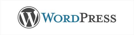Les 25 meilleurs thèmes Wordpress de 2011 ! | Graphiste Webdesigner Bordeaux - Aurora Studio | From The Blog | Scoop.it