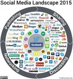 Panorama des médias sociaux 2015 - FredCavazza.net | Innovations pédagogiques numériques | Scoop.it
