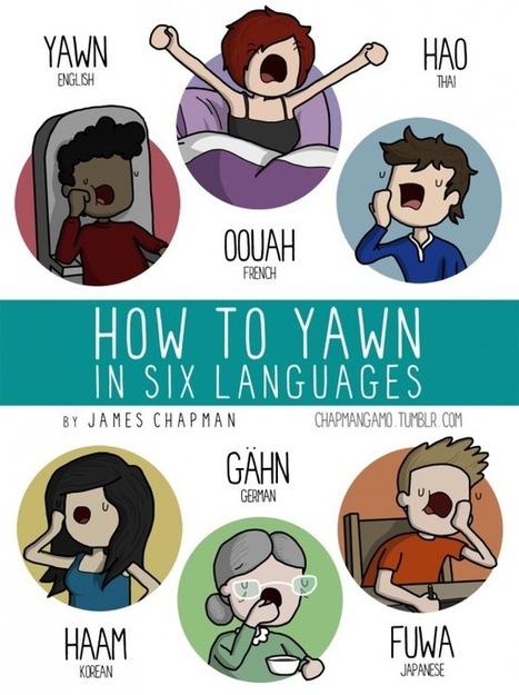 Les onomatopées dans différents langages | Le Lol et le Whaou des Internets | Scoop.it