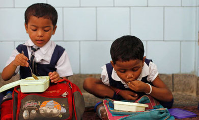 The Indian school lunch deaths are tragic but we must not lose perspective | Nutrition and Development | Scoop.it