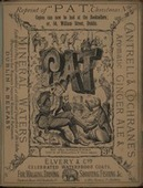 UCD Digital Library:Pat-an Irish three-penny weekly satirical periodical founded in 1879 | The Irish Literary Times | Scoop.it