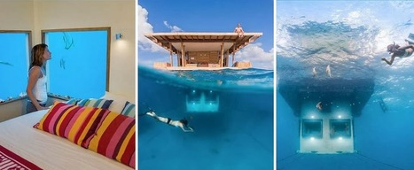 Incredible underwater hotel room!!! | All about water, the oceans, environmental issues | Scoop.it