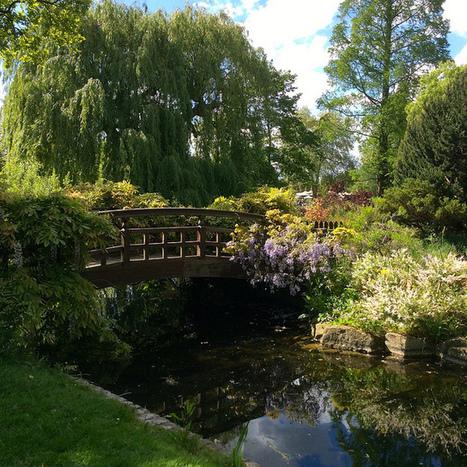 The Japanese Garden in Regent's Park | Sequins and Cherry Blossom | My Japanese Garden | Scoop.it