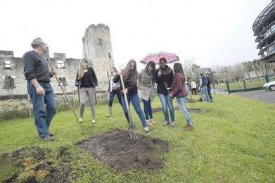 Une truffière au lycée | Agriculture en Dordogne | Scoop.it