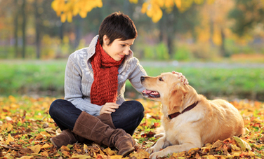 People and Pets: Healing Each Other - Care2.com | Veterinary News | Scoop.it