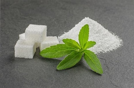Americas: PureCircle launches stevia ingredient for beverages | Innovation Food | Scoop.it