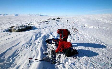 Bacterias de la antártida ayudarían a tratar el cáncer   Bioinformática   Scoop.it