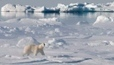 #Canada praised for its stance on #Arctic shipping #pollution | Rescue our Ocean's & it's species from Man's Pollution! | Scoop.it