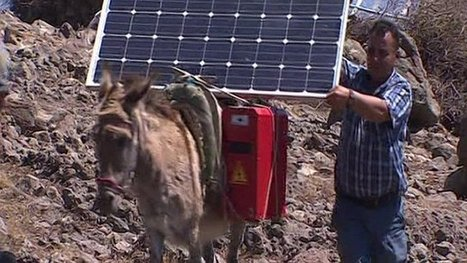 Where donkeys power the internet   Climate Finance   Scoop.it