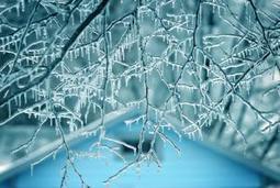 How To: Prep Your Home for Winter by Paul Davis Restoration on Bob Vila Nation   Restoration   Scoop.it