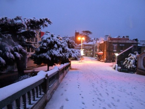 Shimla Discounted Travels Deals | Himachal Travel Packages | Indbaaz Tours and Travels | Scoop.it