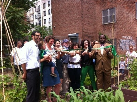 Vacant lots into community gardens: a profile of 596 Acres | Adaptive Cities | Scoop.it