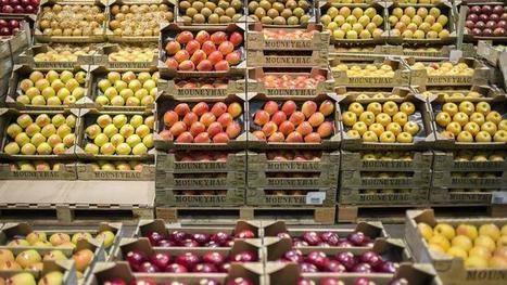 Les agriculteurs incités à réduire le gaspillage alimentaire | Environnement et développement durable, mode de vie soutenable | Scoop.it