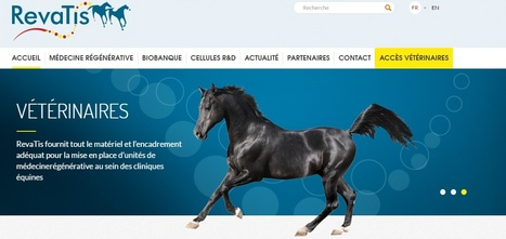 Revatis | WBC Incubator | Sociétés accompagnées par WBC - Actus | Scoop.it