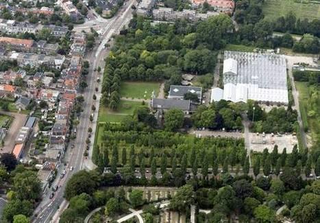 Gemeente Haarlem overweegt wiet te telen | Cannabisclub | Scoop.it