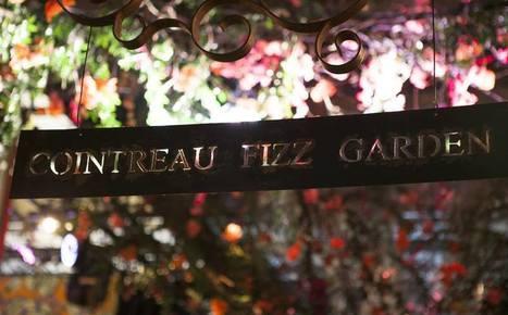 RETOUR. Le Cointreau Fizz Garden à Bruxelles  mis en place un dispositif RFID pour créer de la recommandation live sur les réseaux sociaux auprès du cercle communautaire de chaque invité Retour sur... | evenementiel et digital, par EVENEMENT+ | Scoop.it