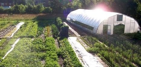 Food Field Urban Farm in Detroit Heals Land, Sets Sights On Aquaponics and Economic Viability | Aquaponics | Scoop.it
