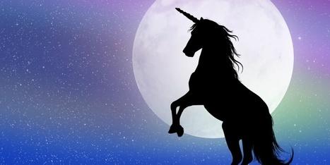 Deze vijf overeenkomsten hadden unicorns voordat ze groot werden   All you can ask   Scoop.it